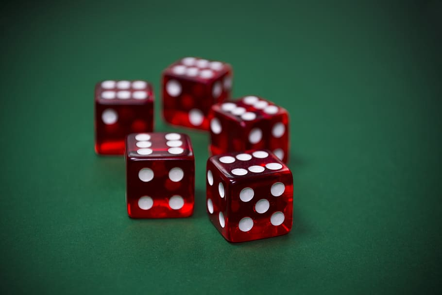 The Newbie's Information To Roulette